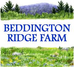 BEDDINGTON RIDGE FARM